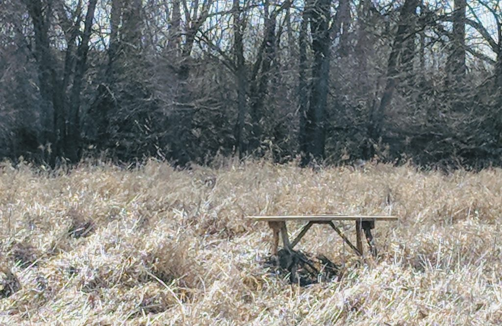 A picnic table in an open field