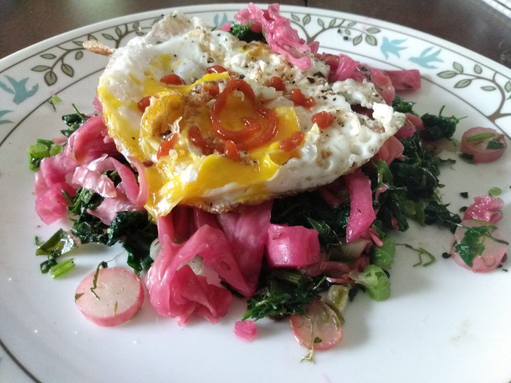 Fresh egg with kraut and greens
