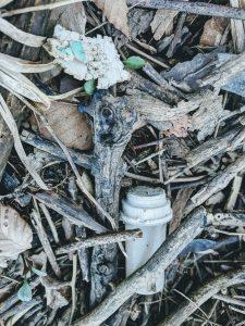 Styrofoam and a Medicine Bottle Littered In A Wetland