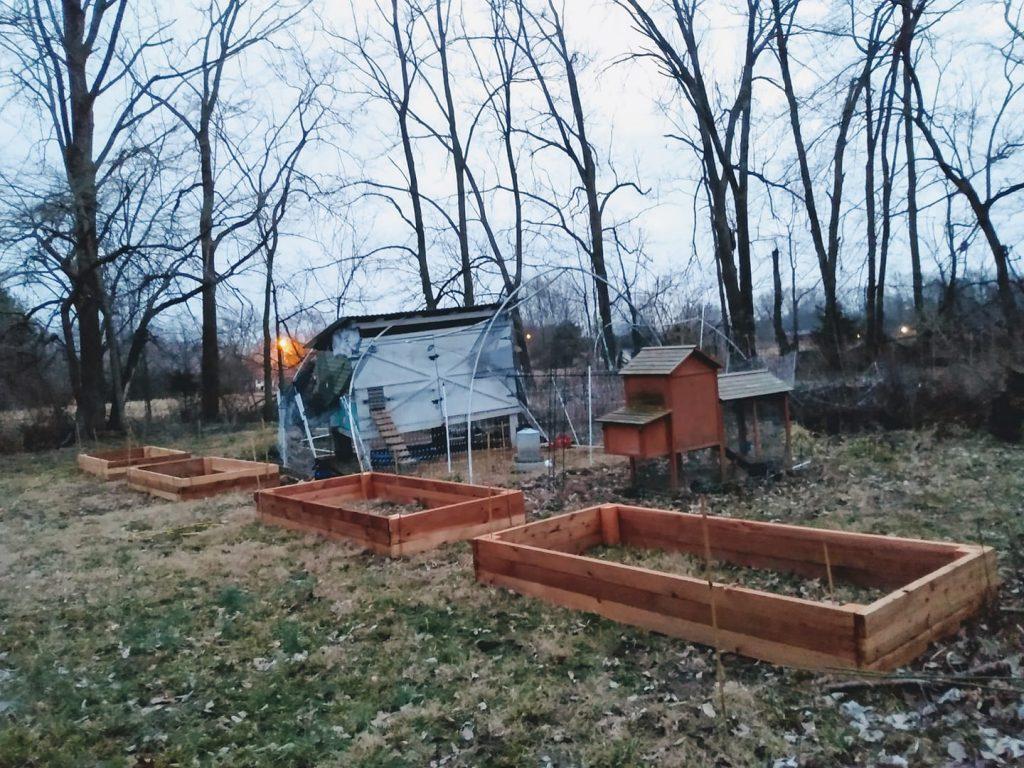 New raised beds for an easier care vegetable garden