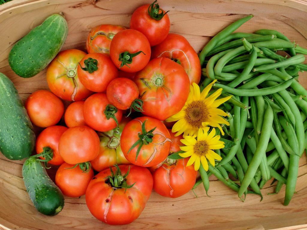 Garden Veggie Harvest