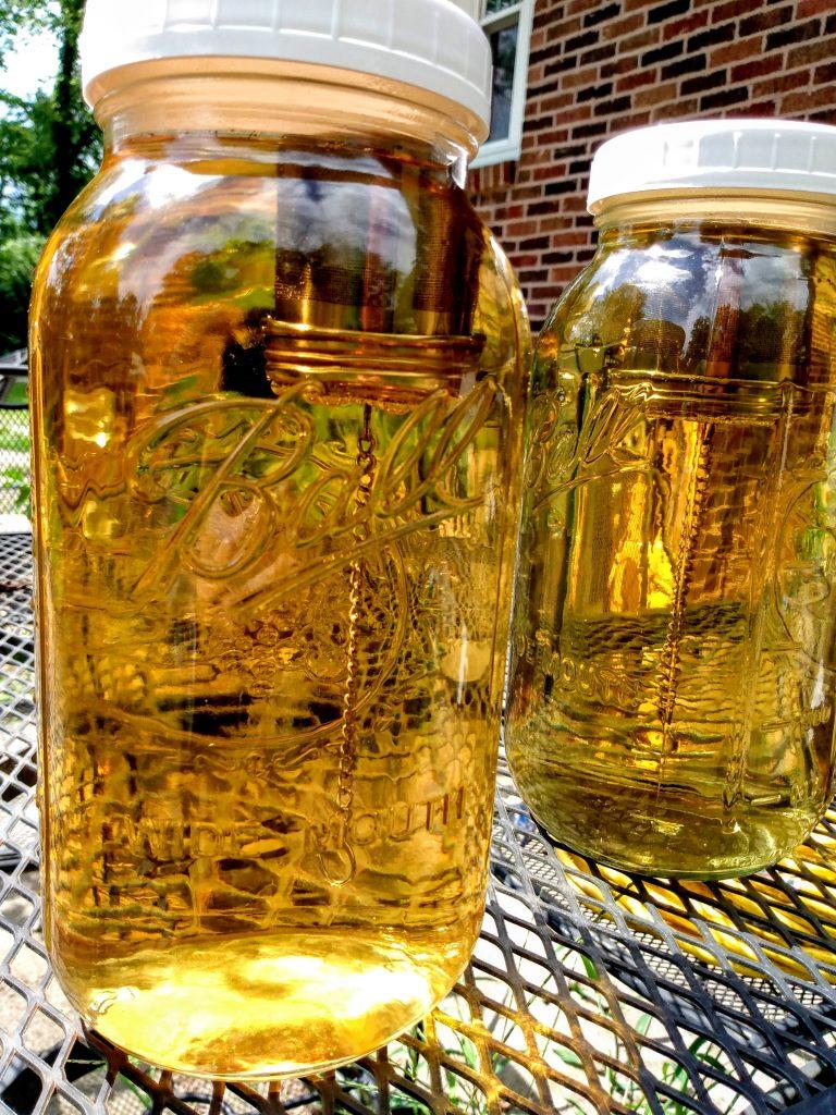 Sun Harvest : Sun Tea Brewing