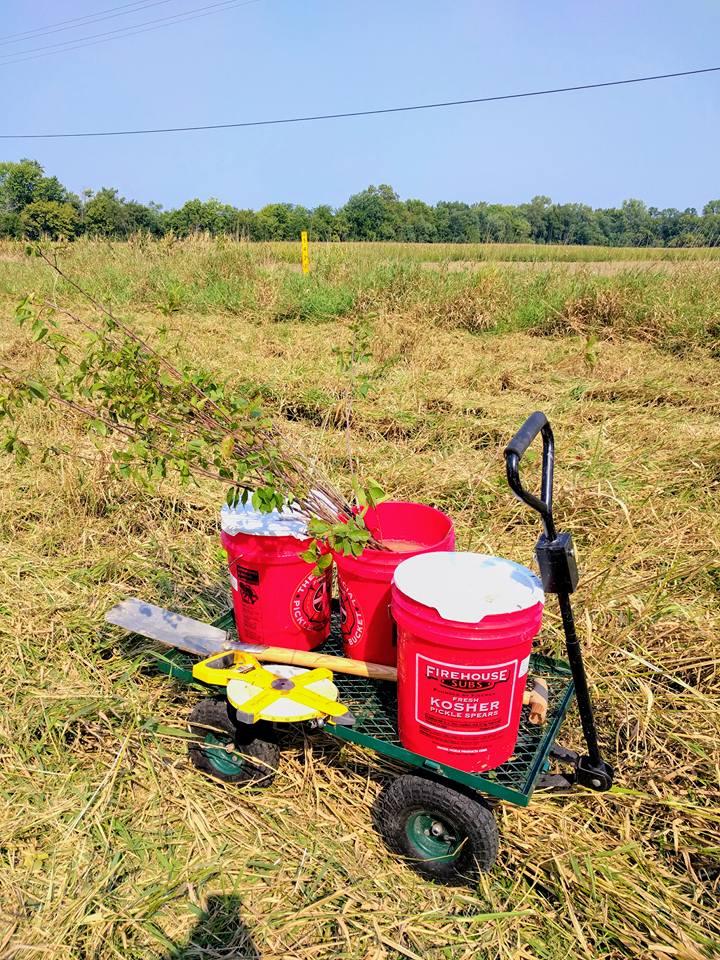Planting Tools On Garden Cart